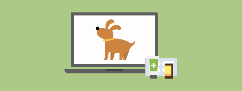 Online Pharmacies for Pets