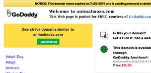 Animalmozo.com