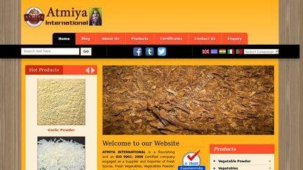 Atmiya International