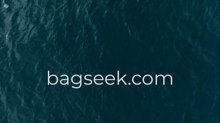 Bagseek
