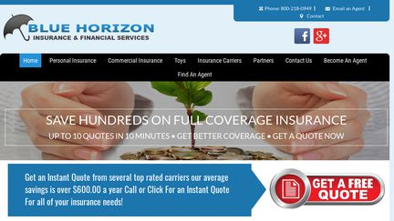 BlueHorizonInsuranceandFinancialServices