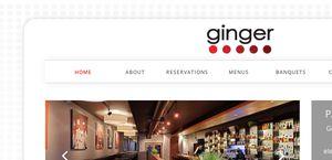 Gingeralaska.com