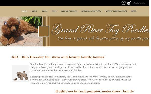 Grand River Poodles