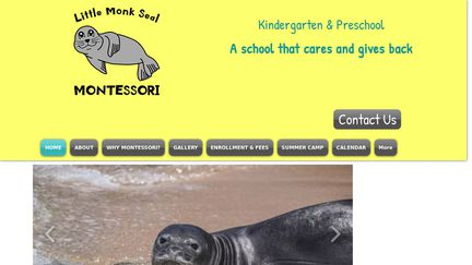 Little Monk Seal Preschool