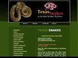Texassnakes.net