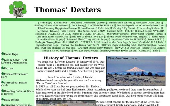 Thomas' Dexters