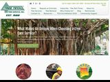 Tree Tech Tree Service