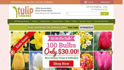 TulipWorld
