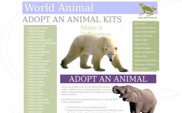 World Animal Foundation.homestead